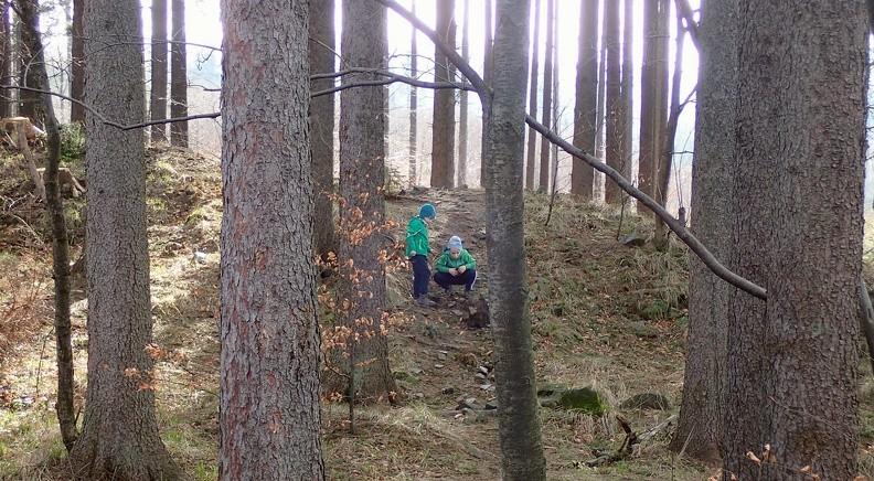 04-P3250022 -- Ważne leśne sprawy