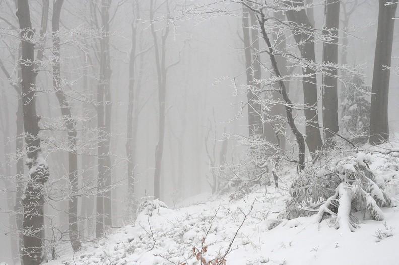 09-IMG 1195 -- Śnieżny portal [Tytuł zdjęcia zaproponowany przez Mikołaja]